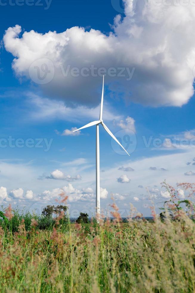 fazenda de turbinas eólicas foto