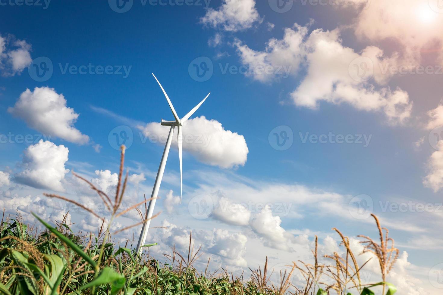 fazenda de turbinas eólicas com luz solar foto