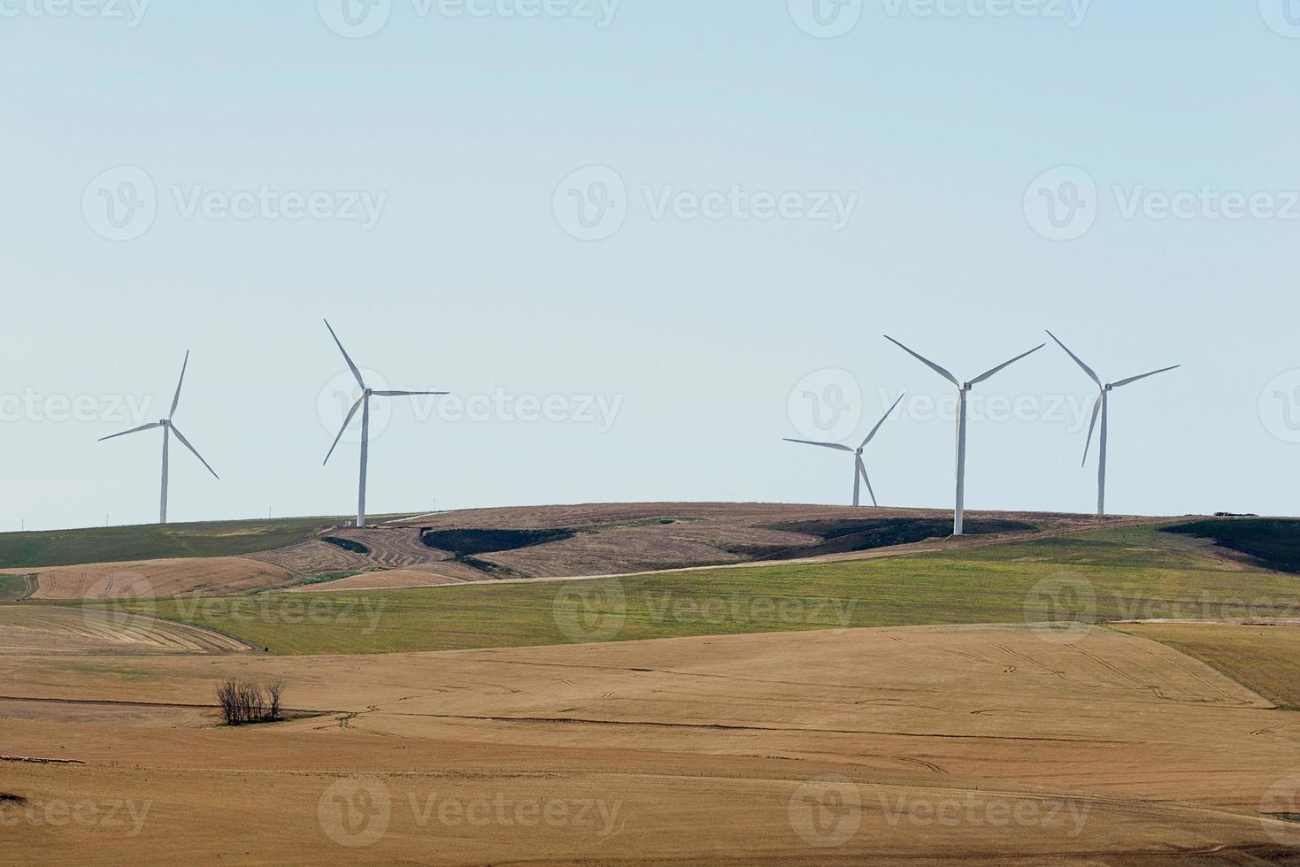 turbinas eólicas foto