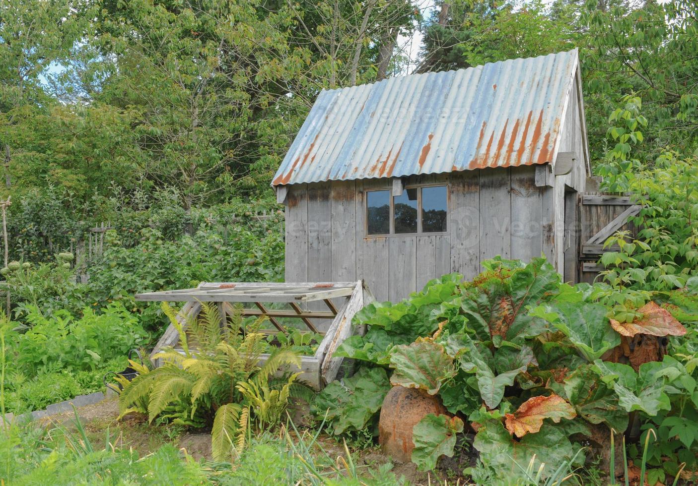 horta tradicional de frutas e vegetais em aldeia típica de Devon foto