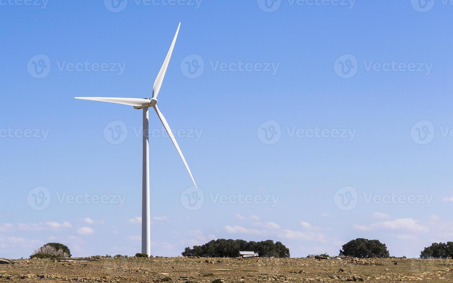 moinho de vento foto
