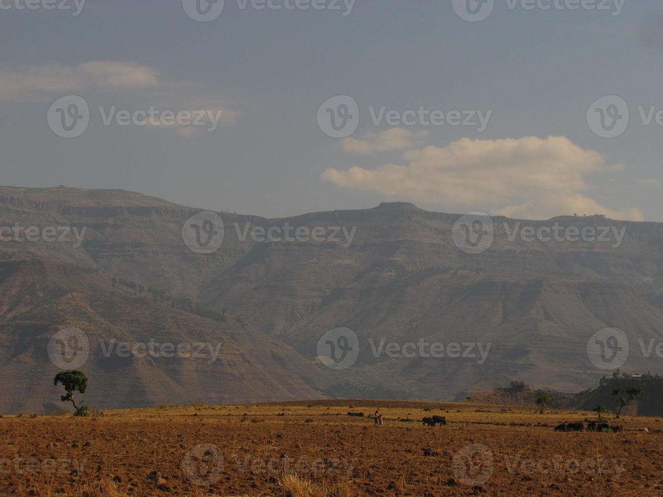 terras agrícolas na etiópia foto