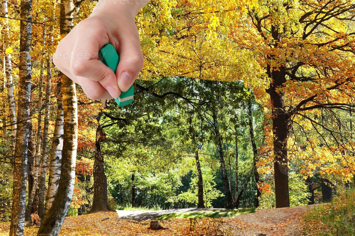 apagador apaga verão e madeiras de outono estão aparecendo foto