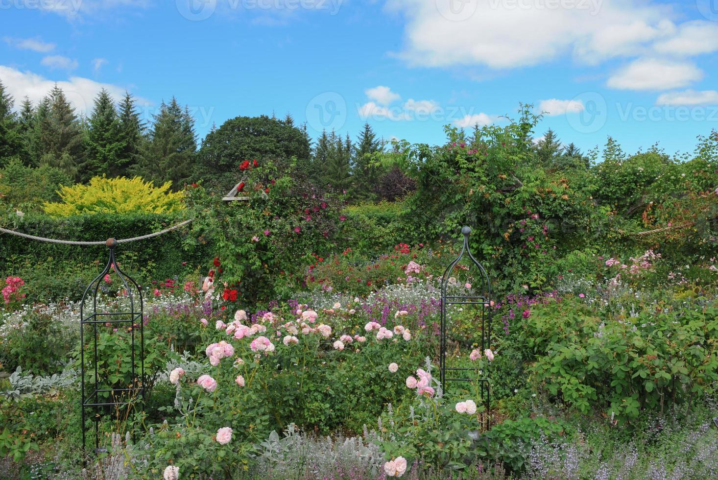 jardins em rosemore, torrington, em devon, inglaterra, reino unido foto
