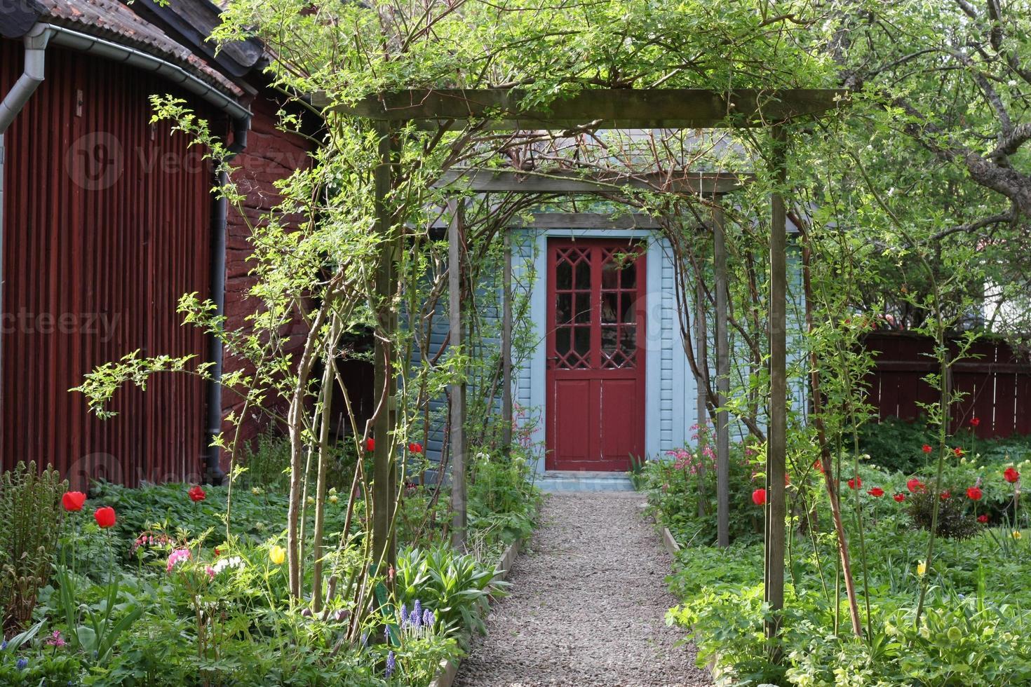 adorável caminho de jardim foto