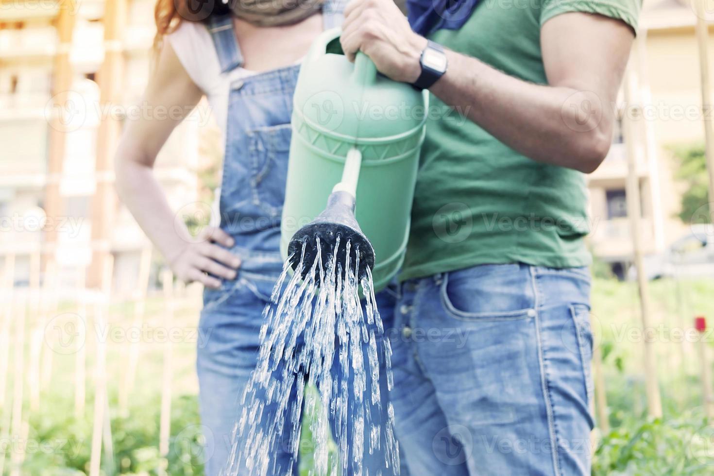 lindo casal de noivos regando plantas no jardim foto