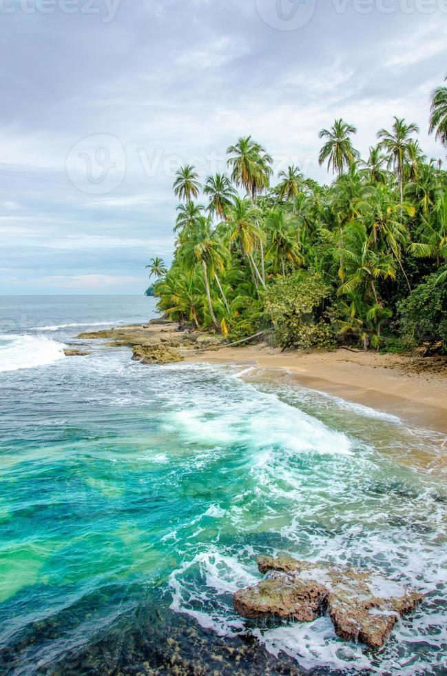 praia caribenha selvagem da costa rica - manzanillo foto