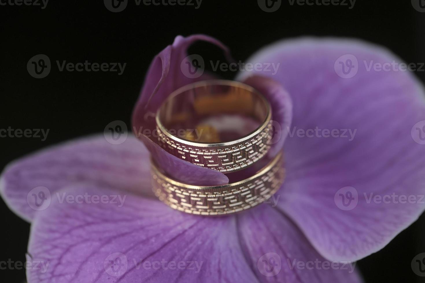 alianças de casamento e orquídea foto