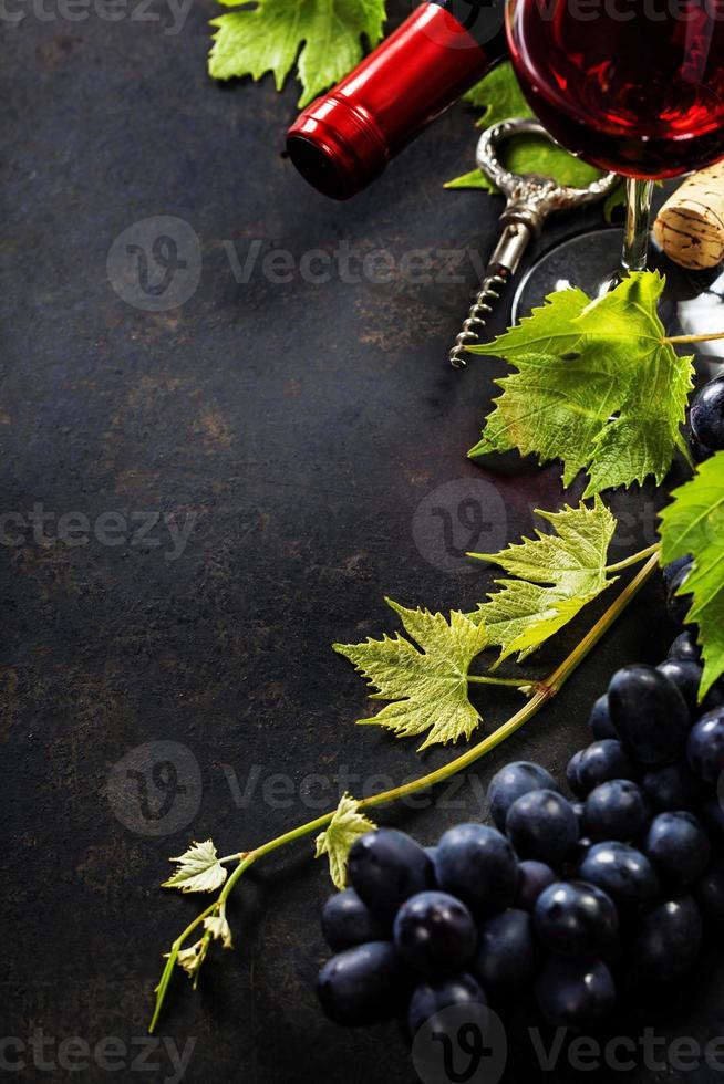 vinho e uva foto