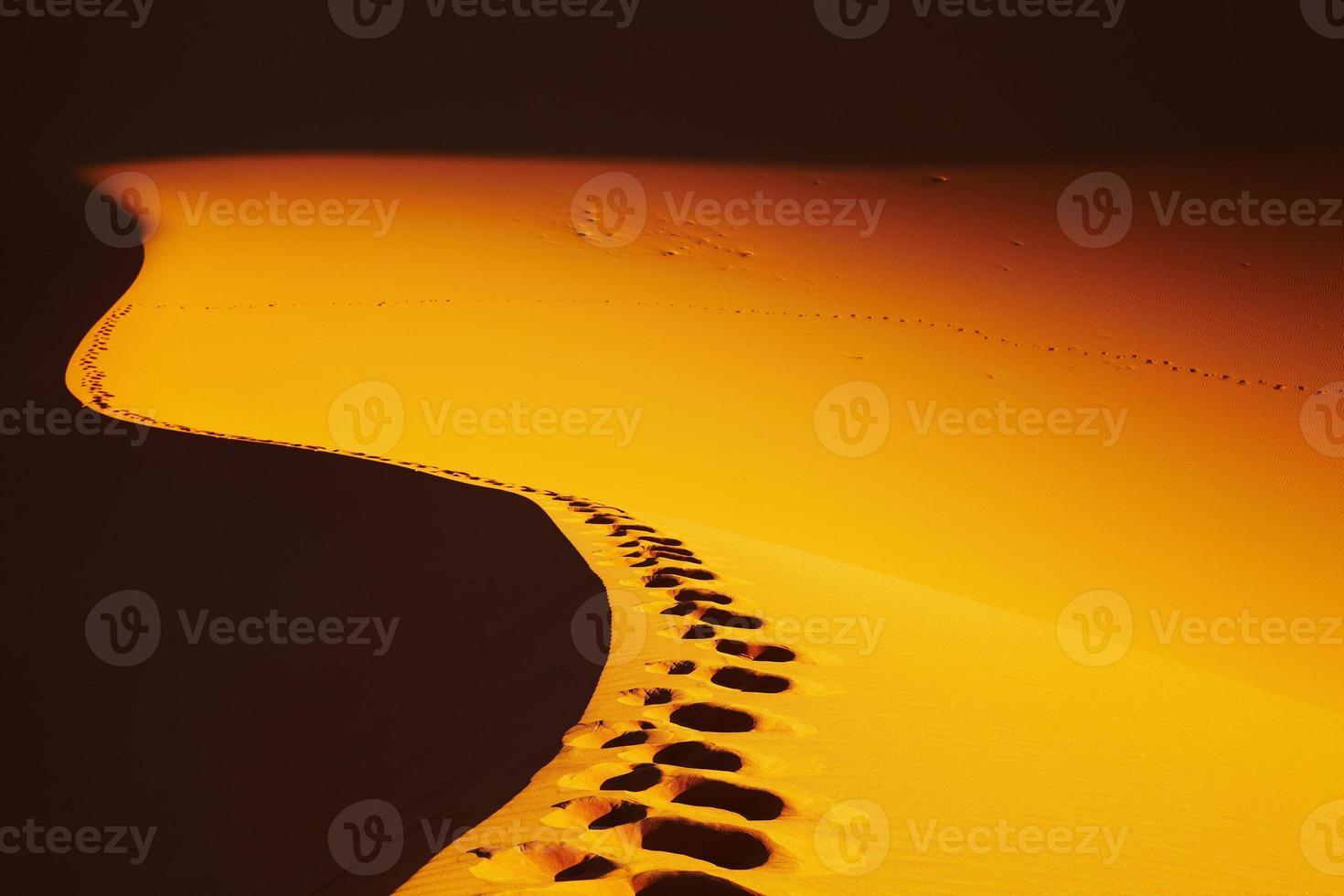 pegadas na duna de areia foto