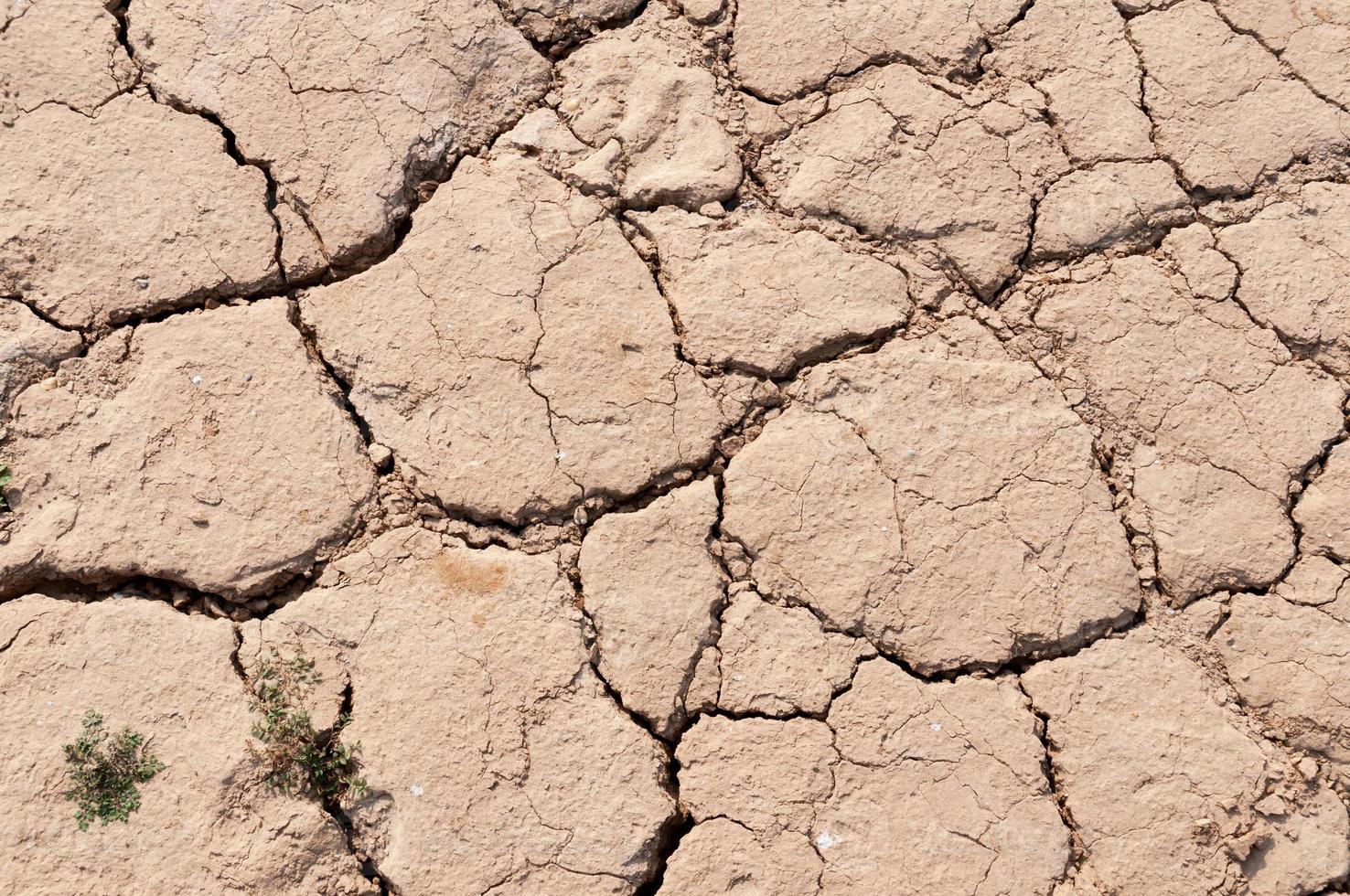 leito do lago secando devido à seca foto