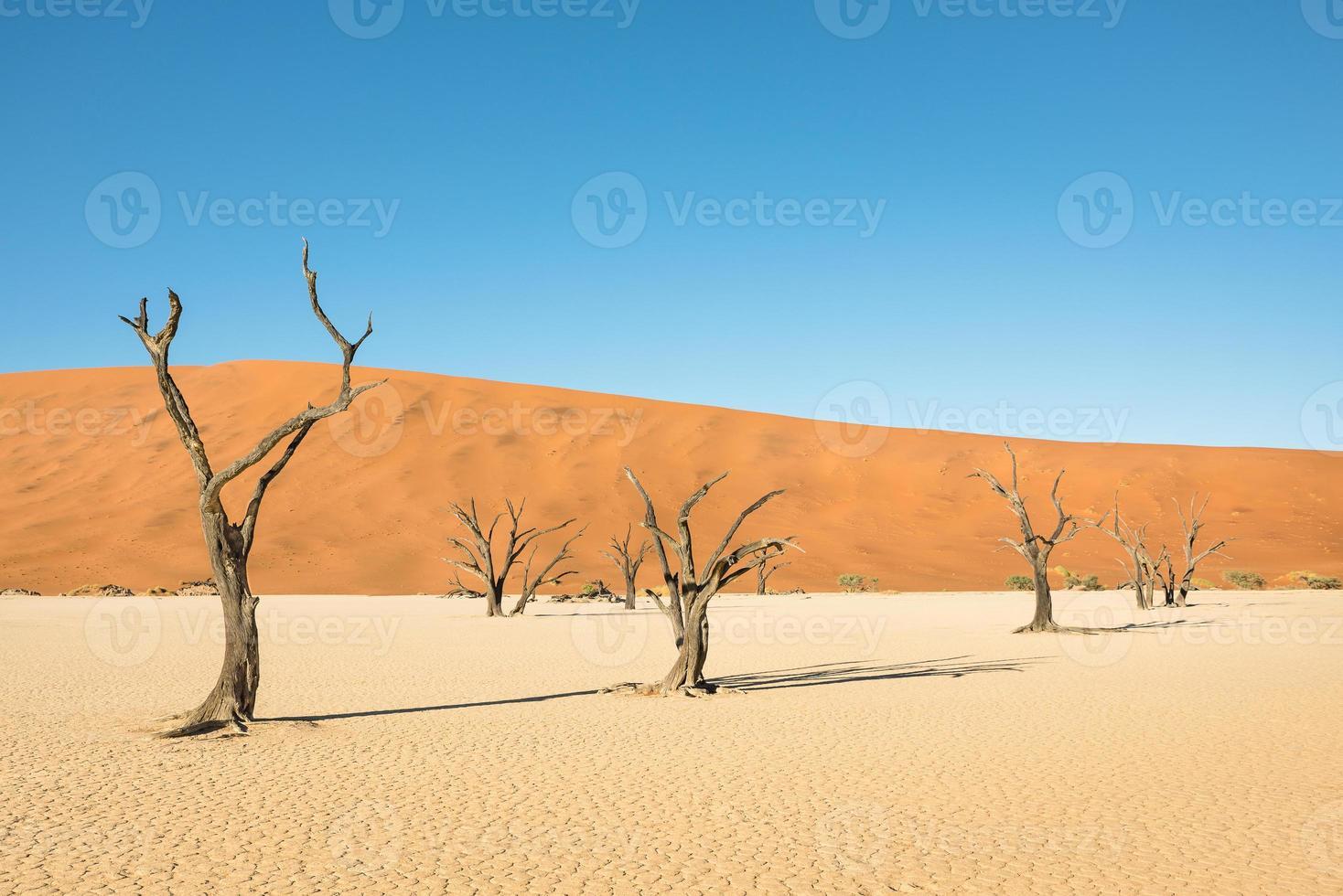 área da cratera do deserto em Deadvlei em Sossusvlei na Namíbia foto