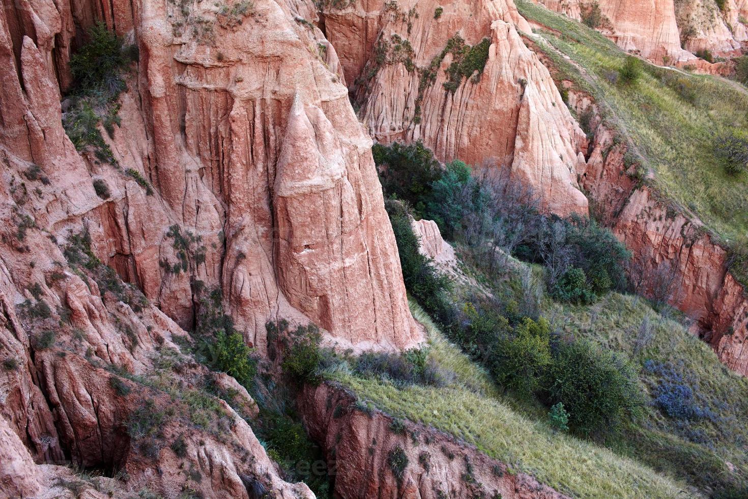 Ravina vermelha das montanhas dos Cárpatos foto