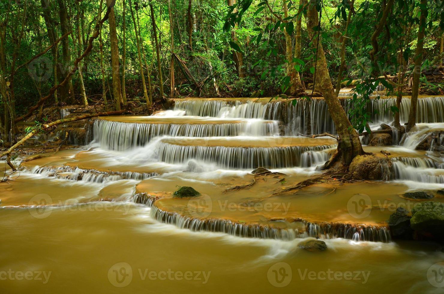 cachoeiras em florestas tropicais foto