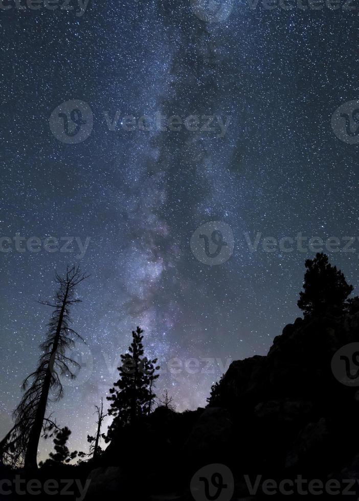 via láctea, floresta nacional tahoe foto