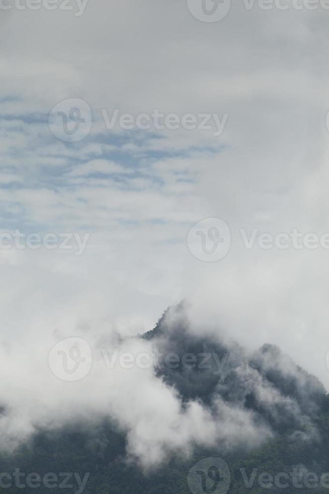 belas paisagens montanhosas, floresta e neblina foto