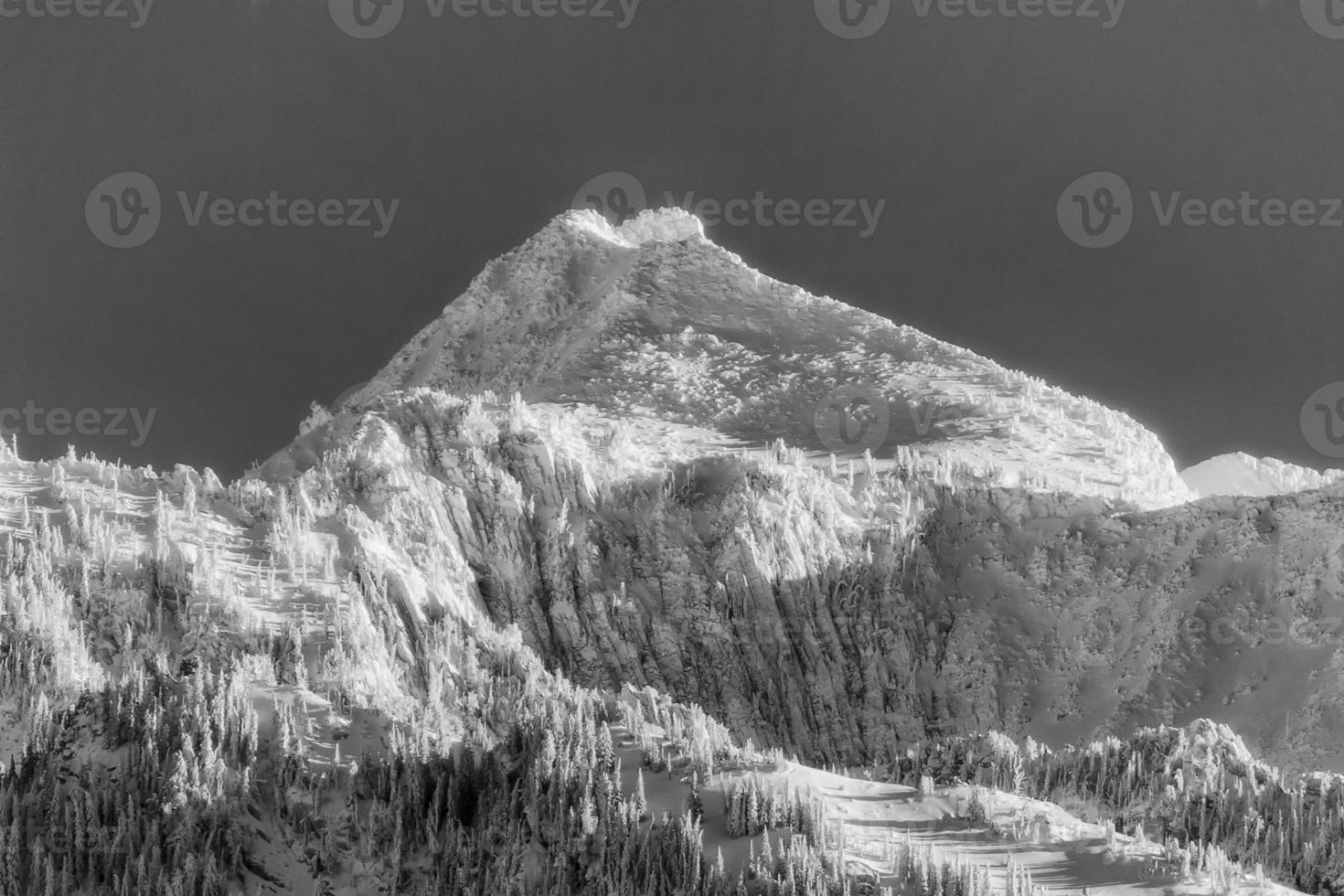 pico solitário coberto de neve bw foto