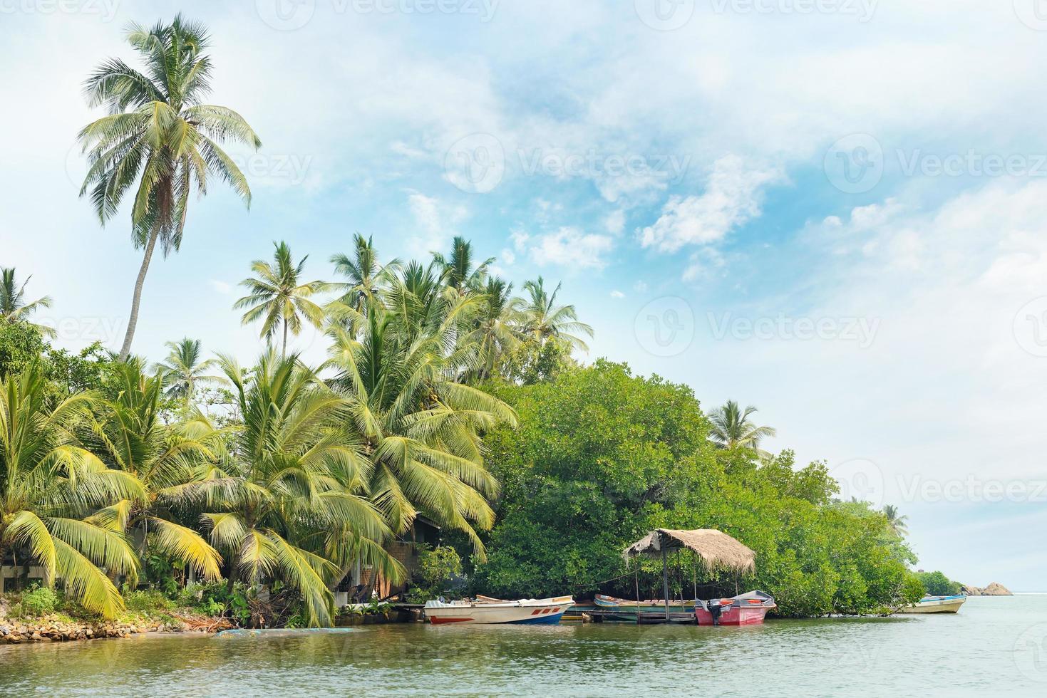 floresta equatorial e barcos no lago foto