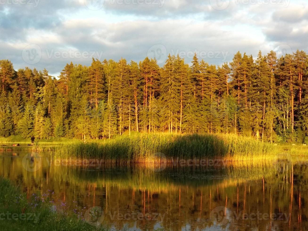 floresta idílica à beira do lago no outono foto