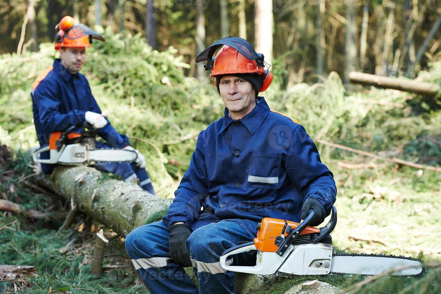trabalhador lenhador com motosserra na floresta foto