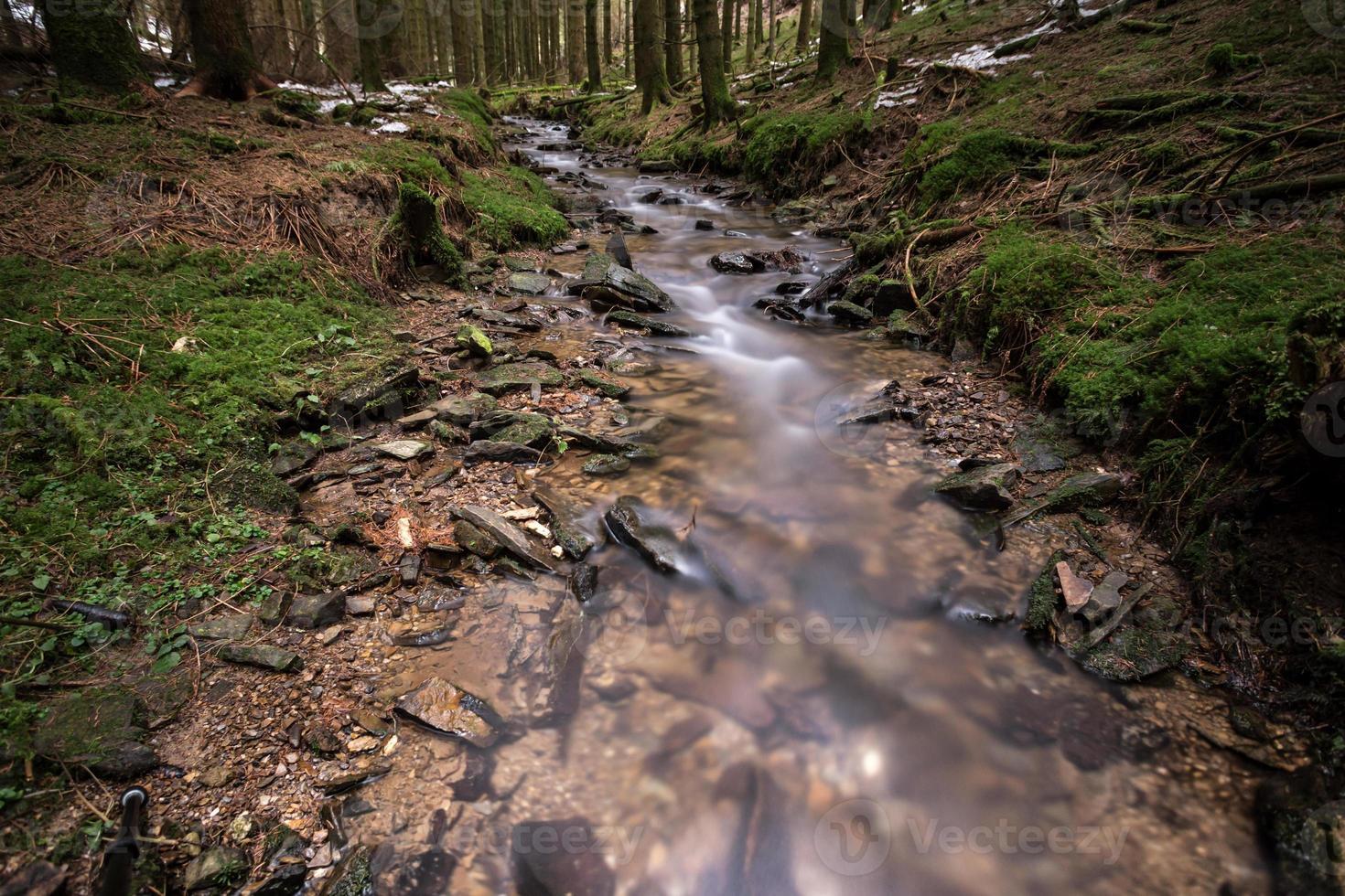 pequeno rio em uma floresta fria de inverno foto