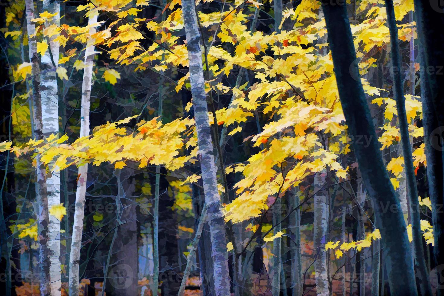 outono floresta de bétulas, efeito de tinta aquarela foto