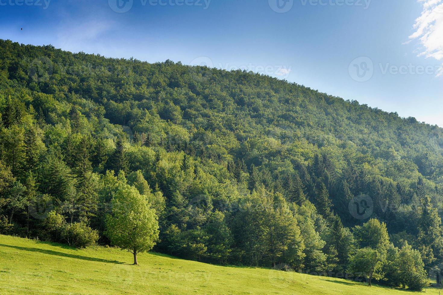 região montanhosa foto