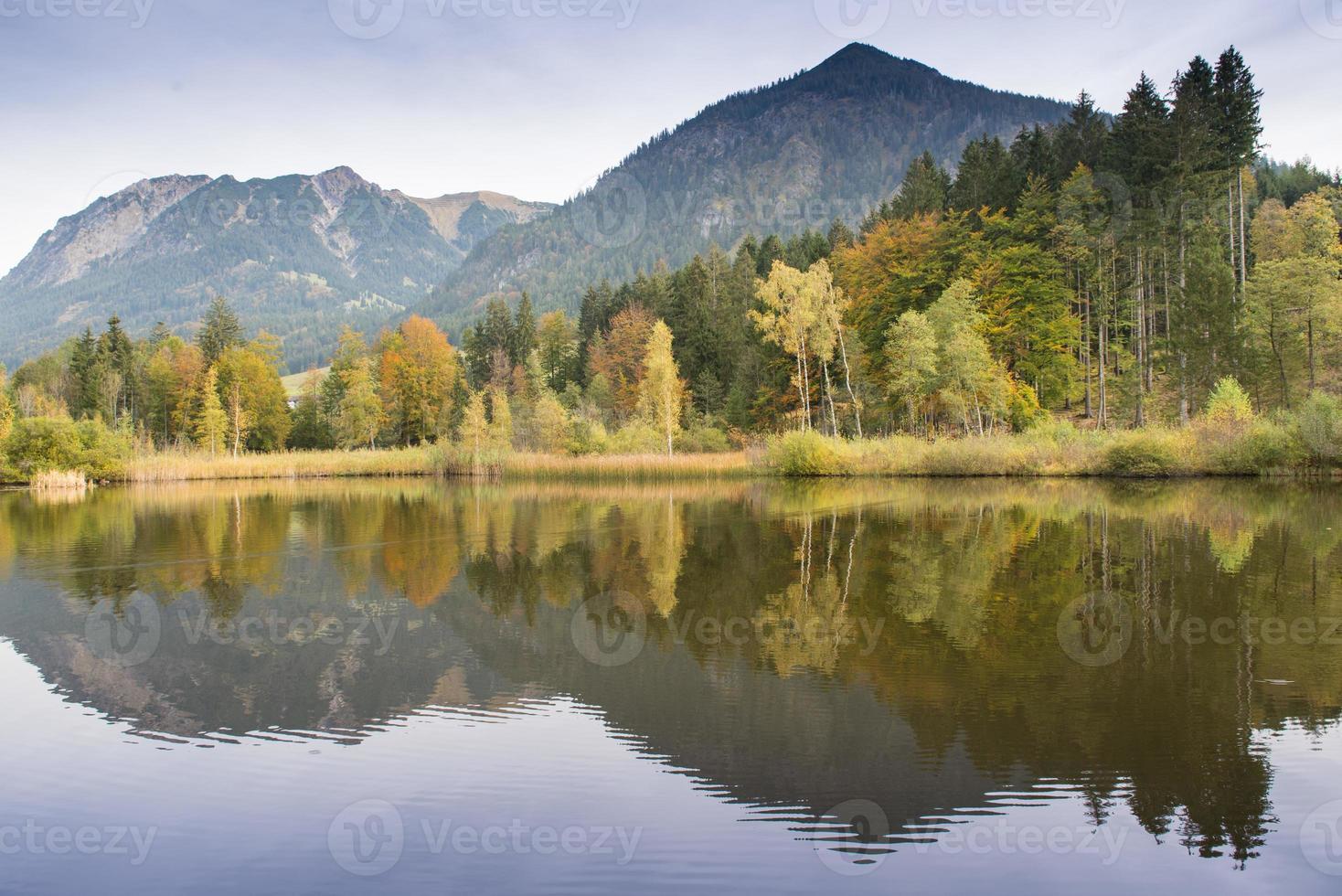 lagoa de pântano nas montanhas foto