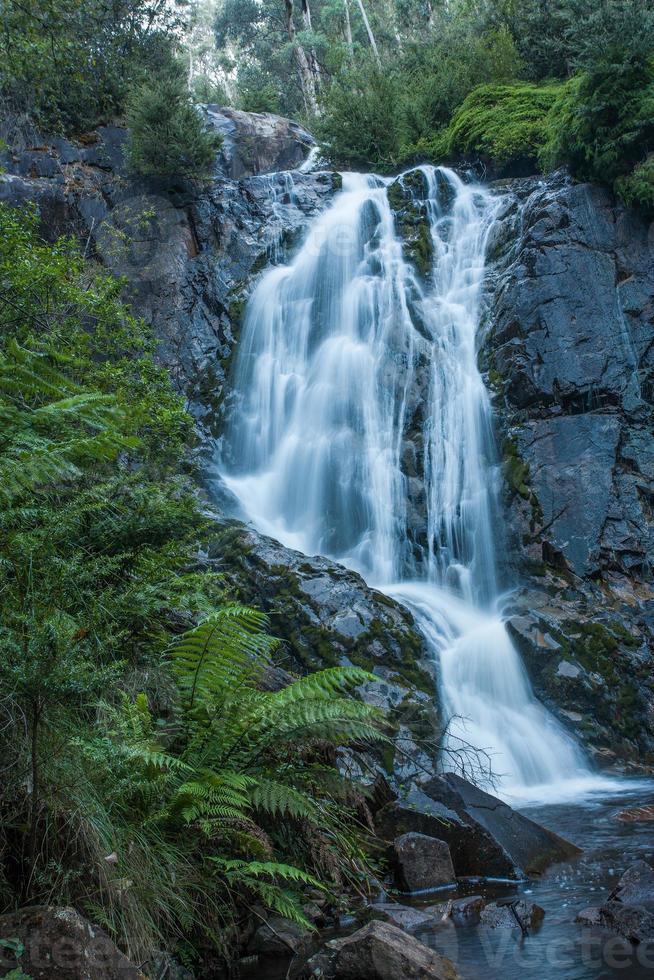 cachoeira, parque nacional yarra range foto