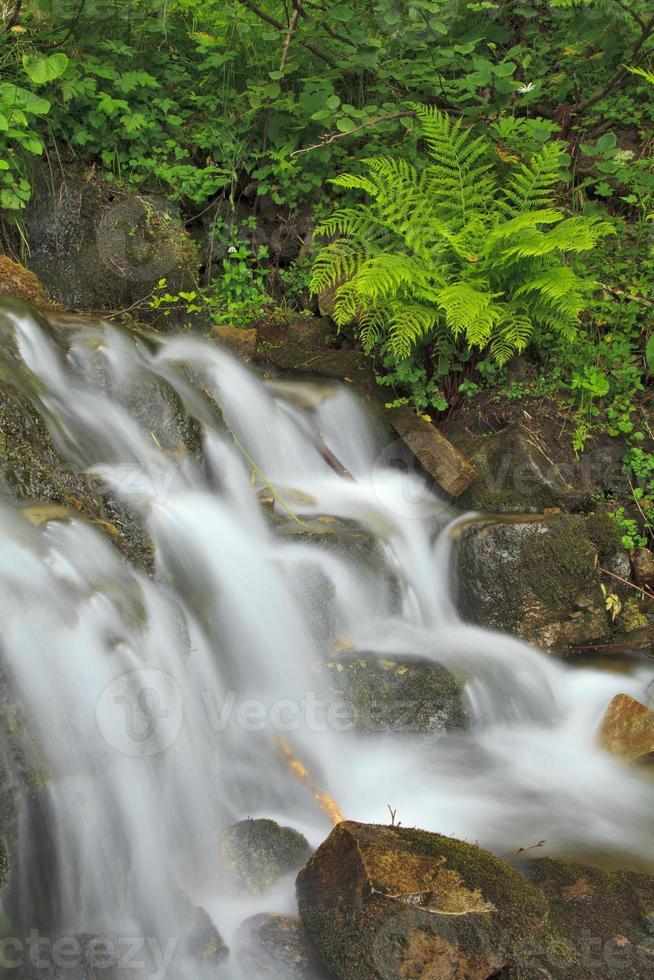 bela cachoeira da montanha no verão foto