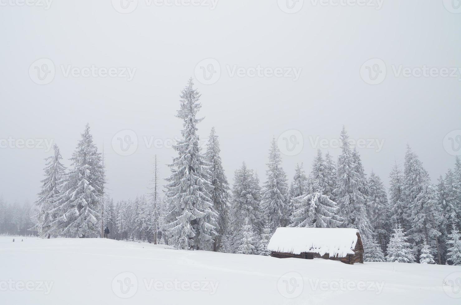vale da montanha com cabana foto