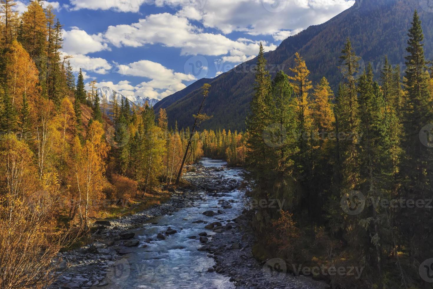 paisagem de outono com montanhas, rio e árvores amarelas. foto