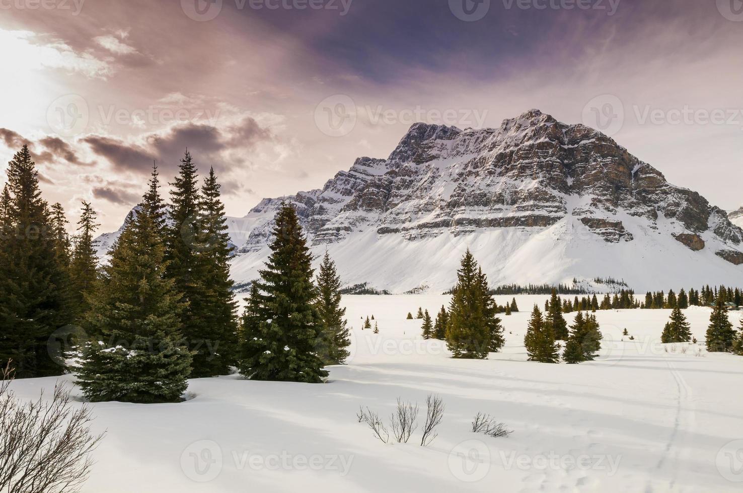 inverno no parque nacional de banff foto