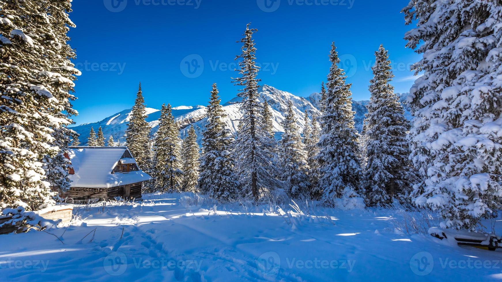 velha cabana de madeira em uma montanha de inverno foto