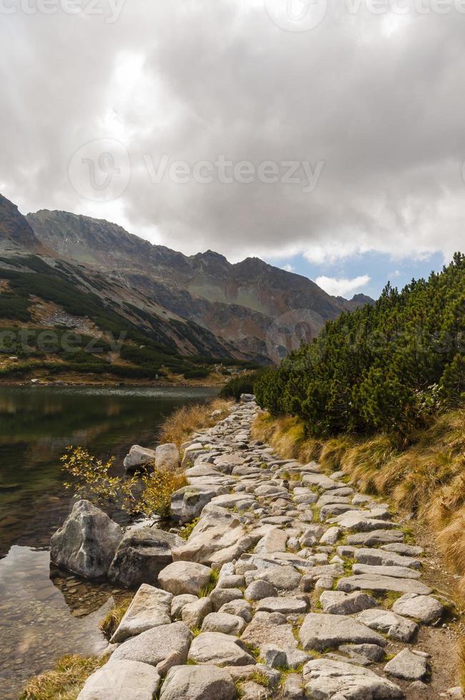 caminho pelo lago foto