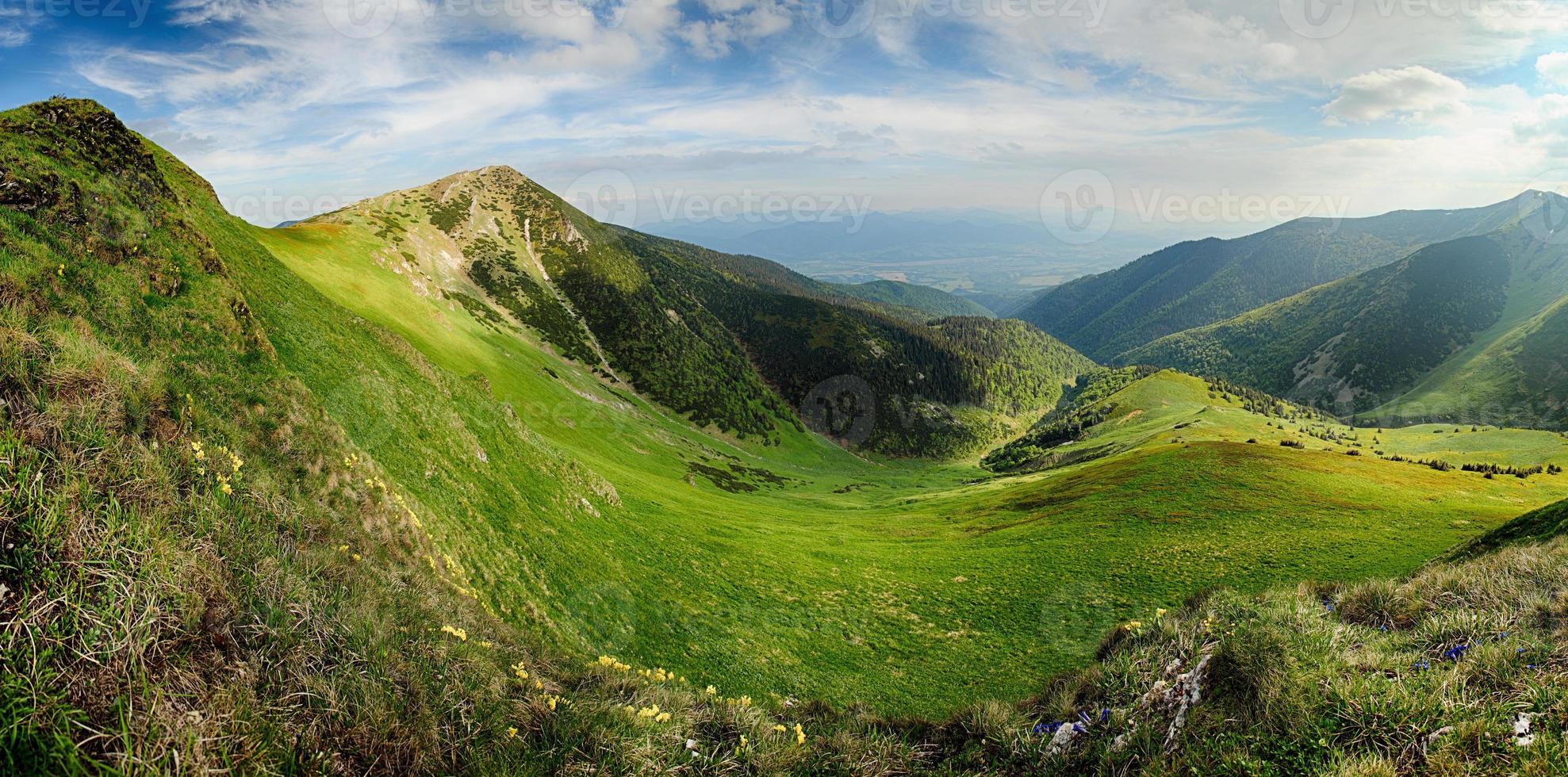 verão colorido nas montanhas. foto