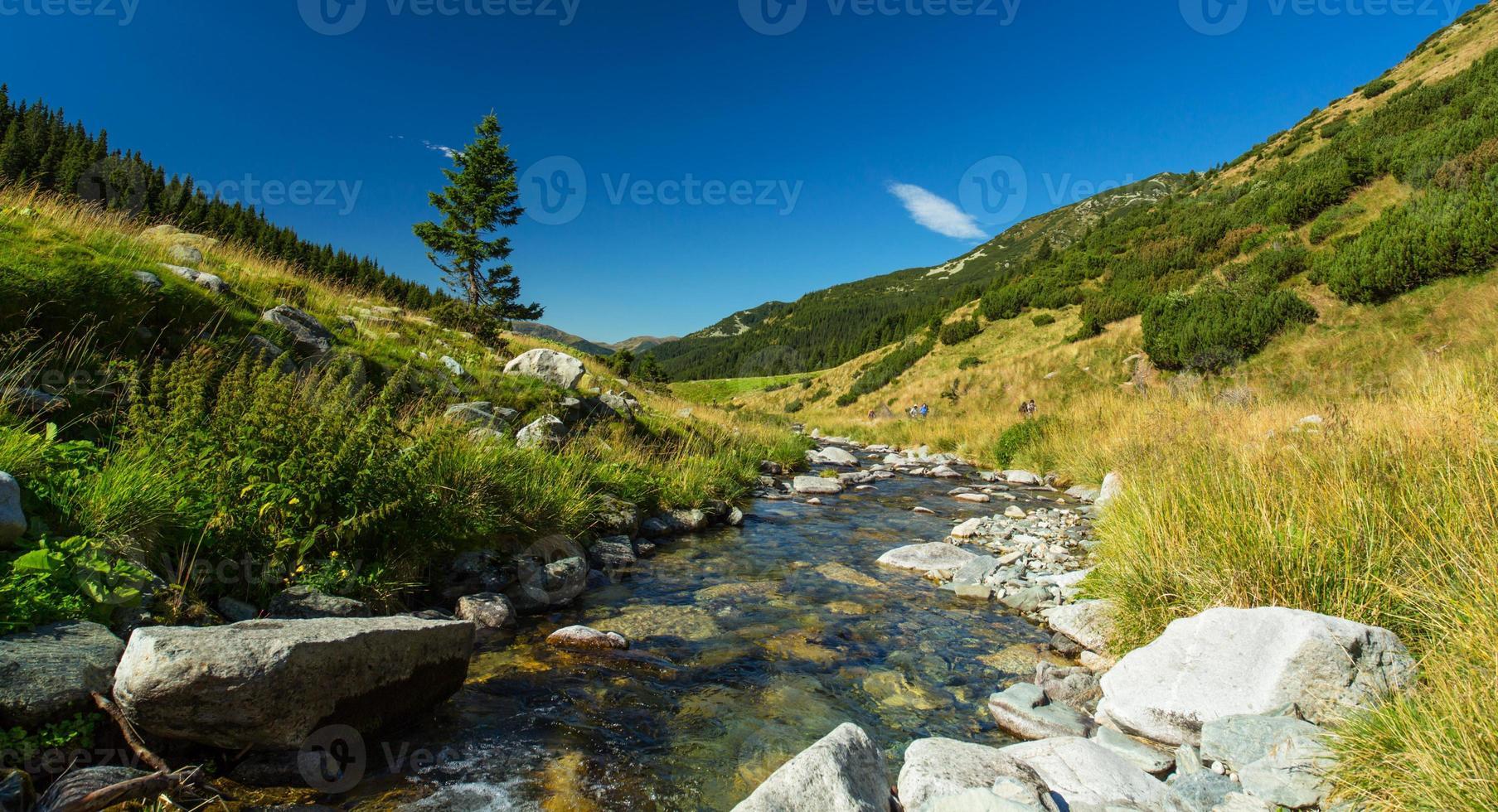 cenário pastoral nos Alpes foto