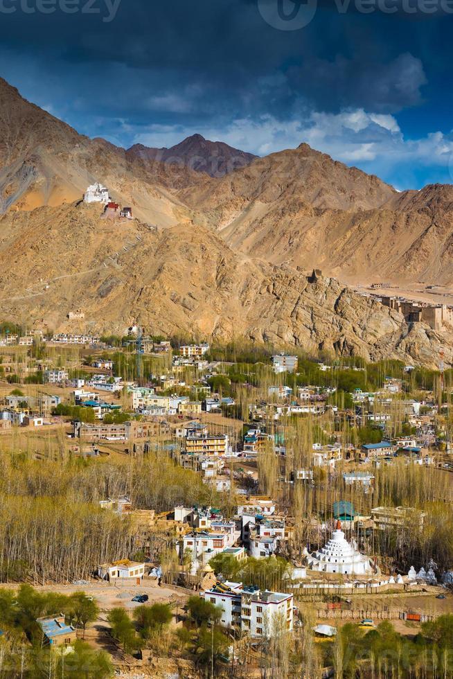 vista da cidade de leh, capital de ladakh, na índia. foto