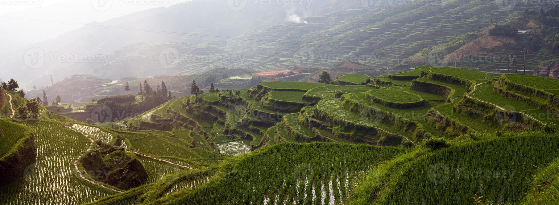 terraço de arroz na montanha foto