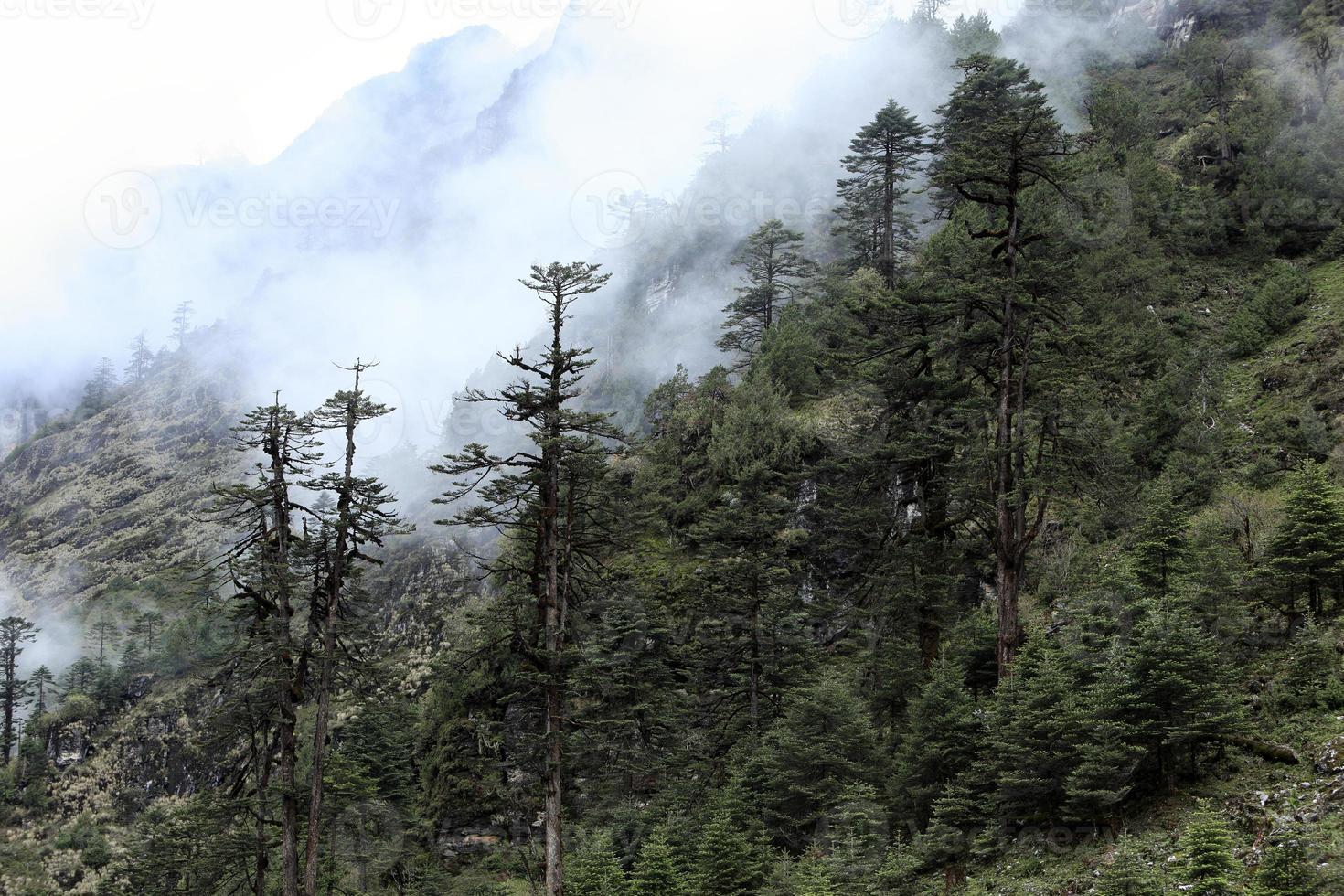 montanha coberta de neve em nevoeiro - cordilheira do Himalaia, Sikkim, Índia foto