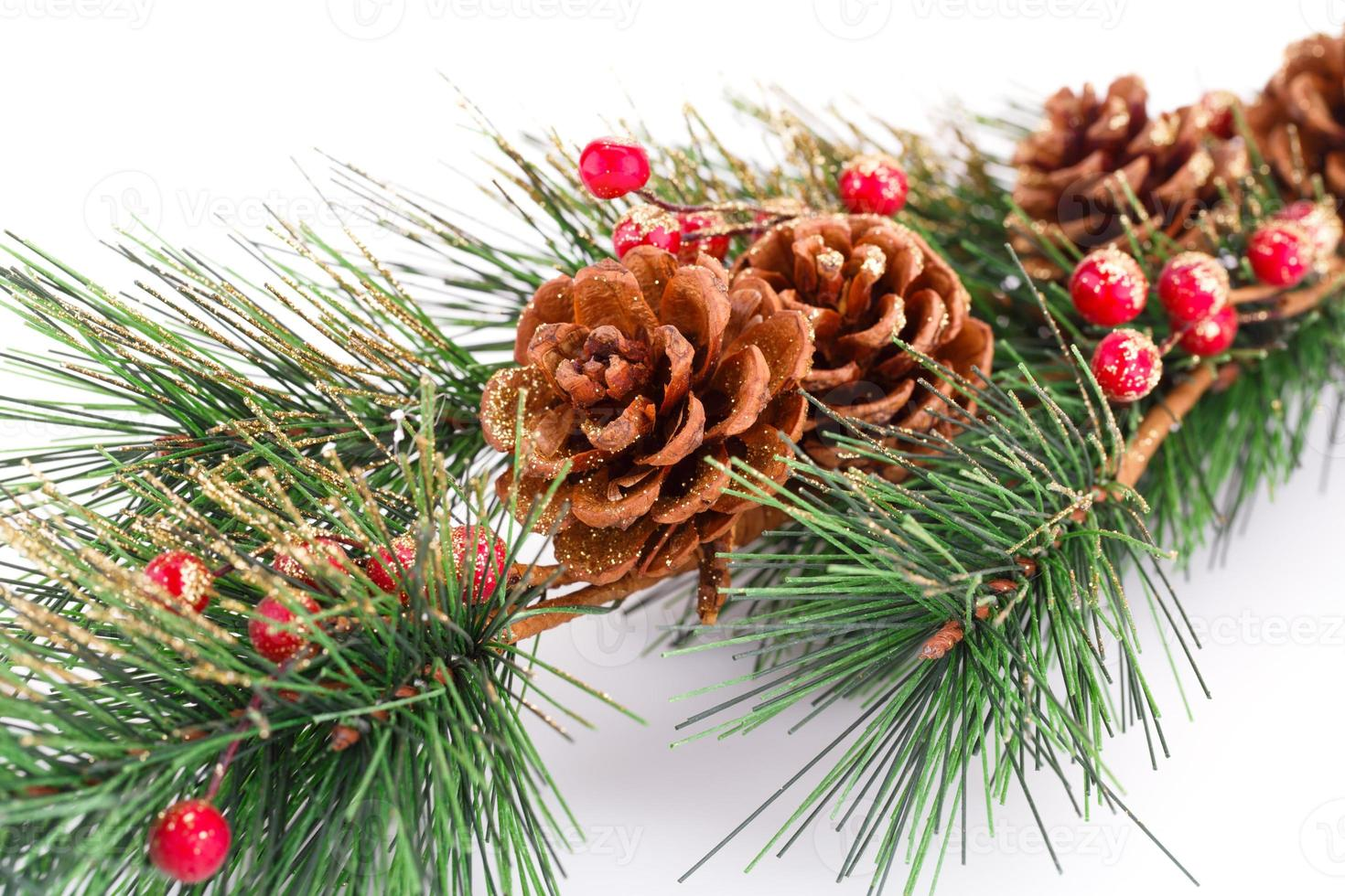 galho de árvore de natal foto