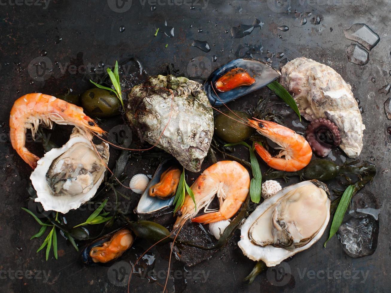 deliciosos frutos do mar frescos foto