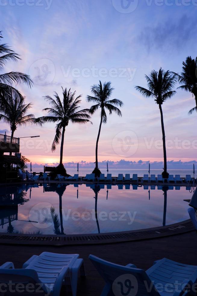 nascer do sol com palmeiras foto