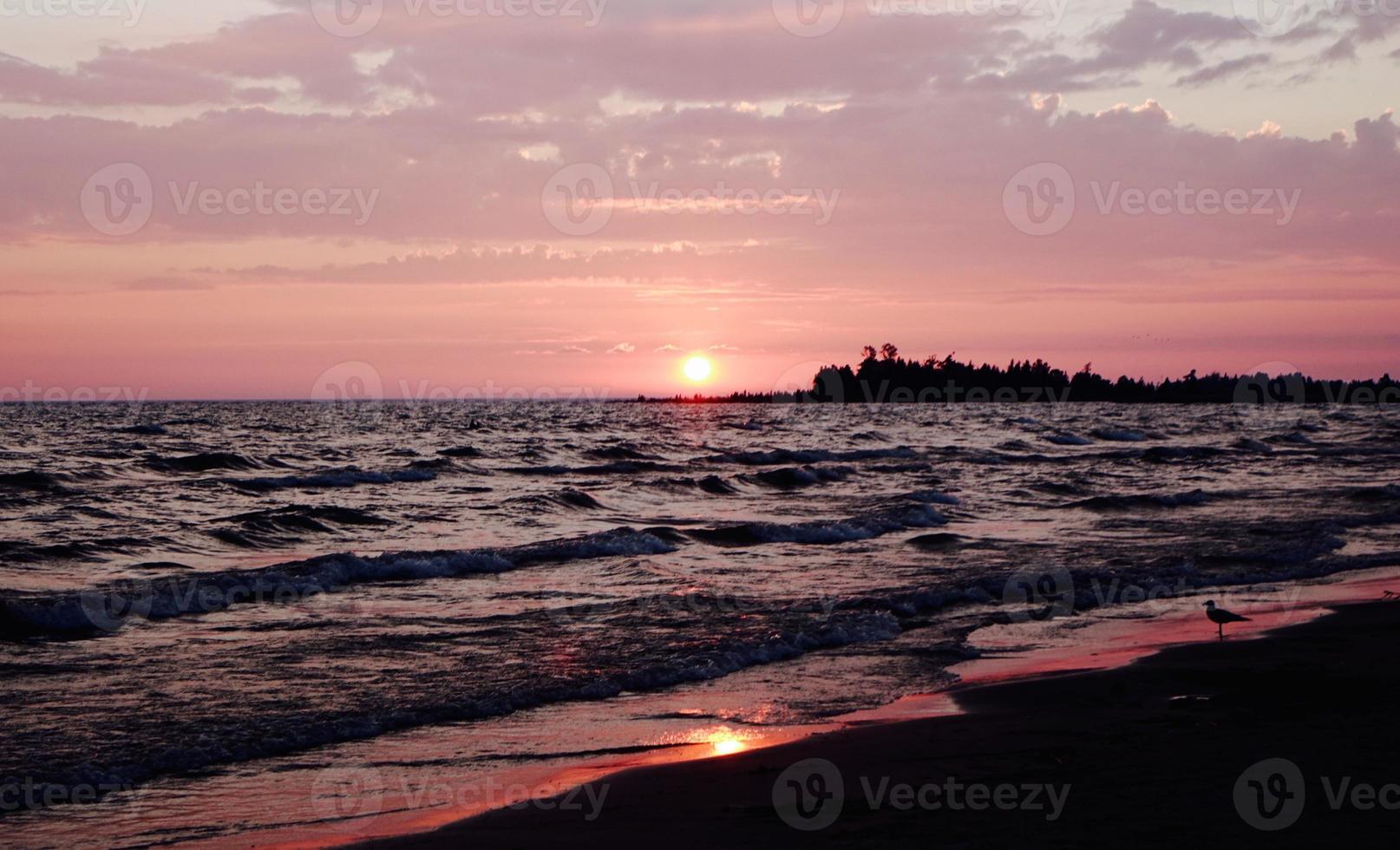 pôr do sol vermelho e rosa foto