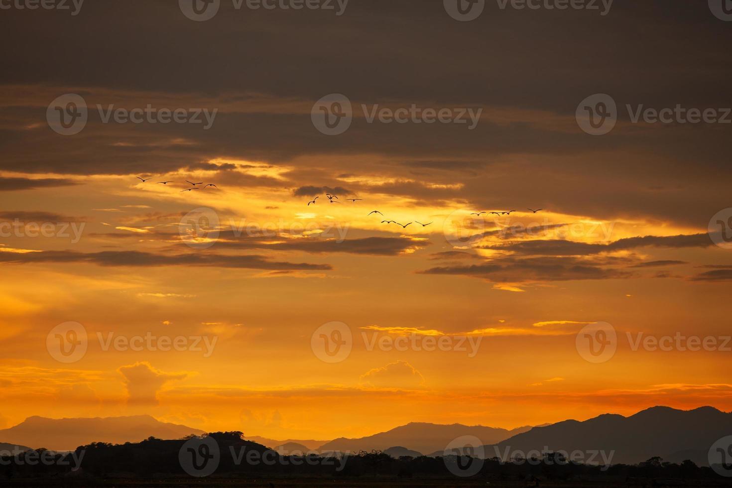 paisagem do pôr do sol nos campos do sri lanka foto