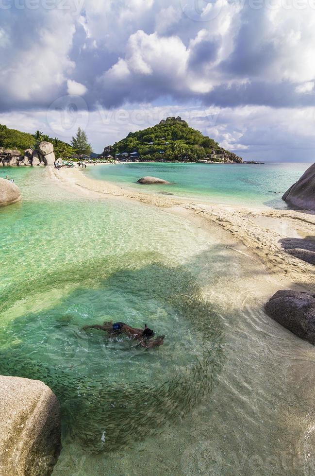 jovem nadando dentro de peixe cricula de água cristalina praia tropical foto