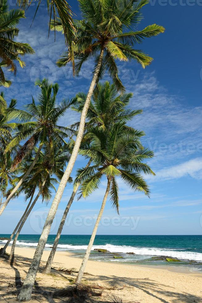 praia tangalle no sri lanka foto