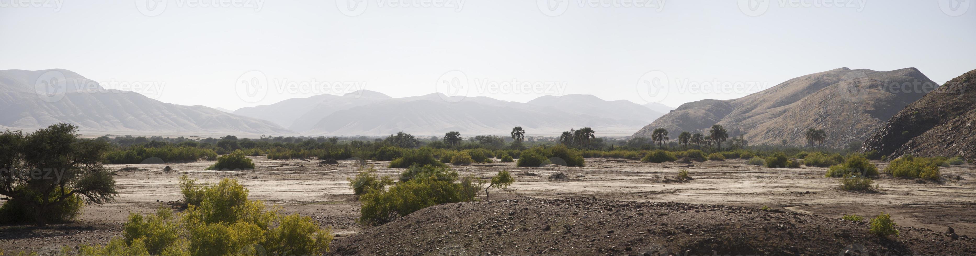 Reserva de caça Kaokoland na Namíbia foto