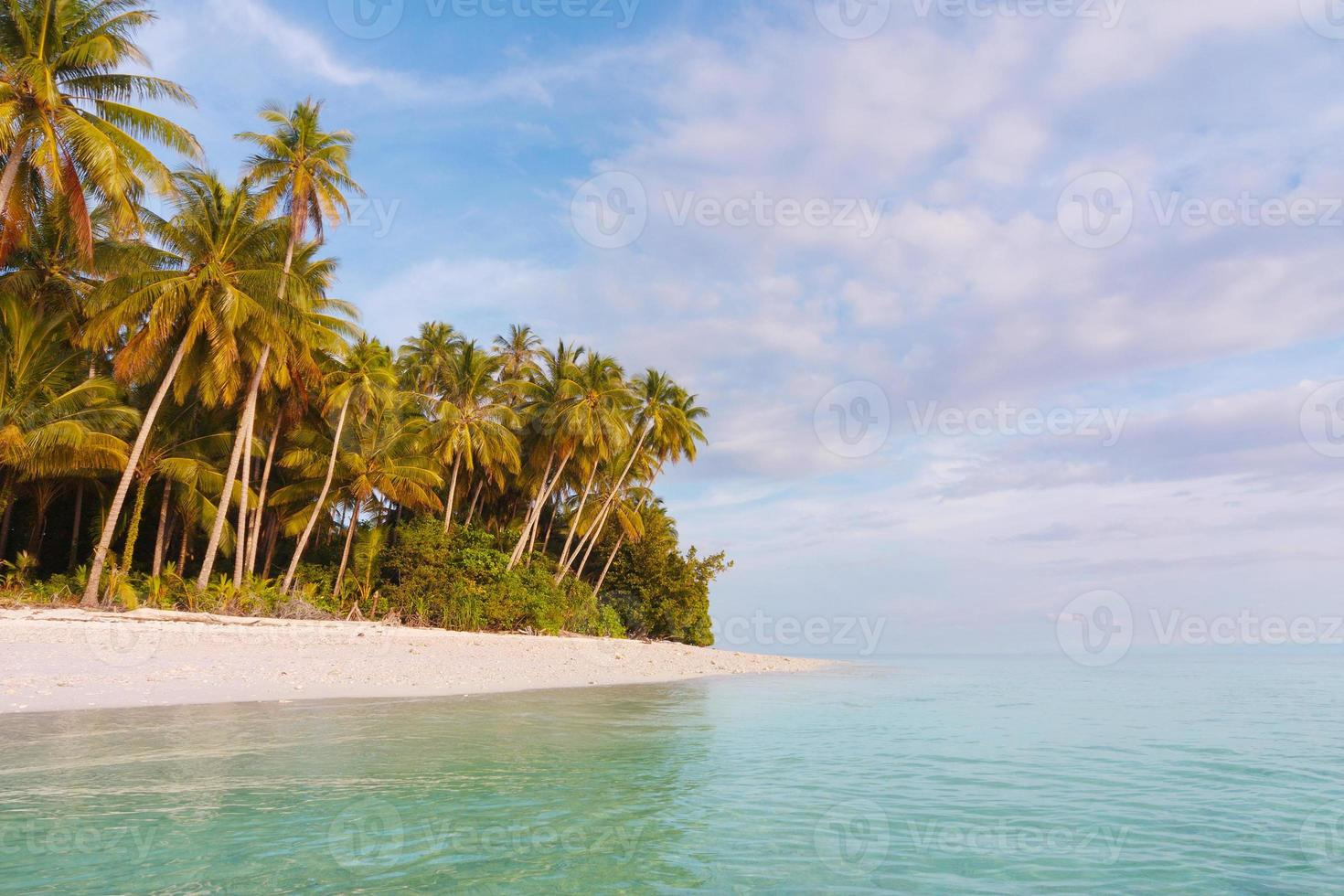 ilha desabitada no parque nacional shendravasih foto