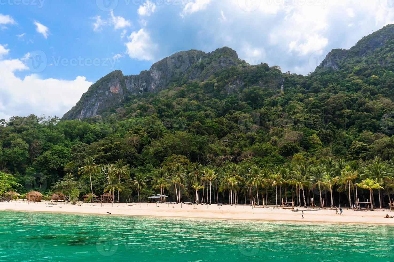 ilha com palmeiras foto